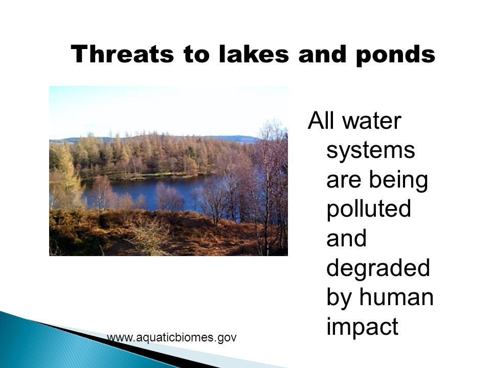 Threats to lakes and ponds