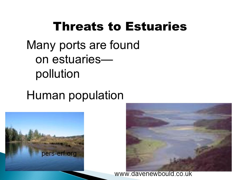 Many ports are found on estuaries—pollution