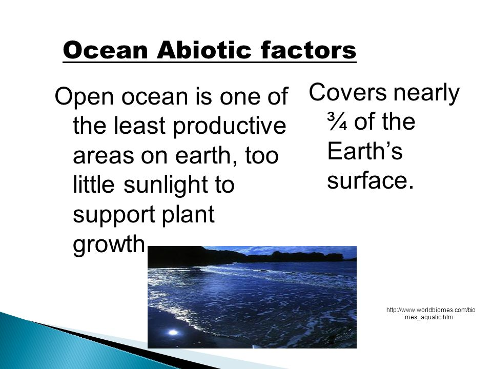 Covers nearly ¾ of the Earth's surface.