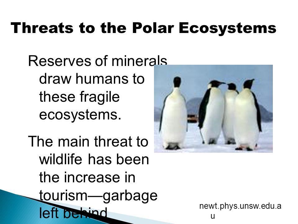 Threats to the Polar Ecosystems