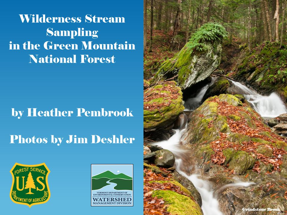 Wilderness Stream Sampling in the Green Mountain National Forest by Heather Pembrook Photos by Jim Deshler