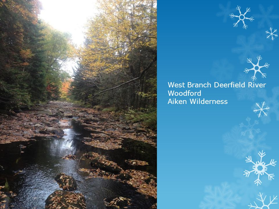 West Branch Deerfield River