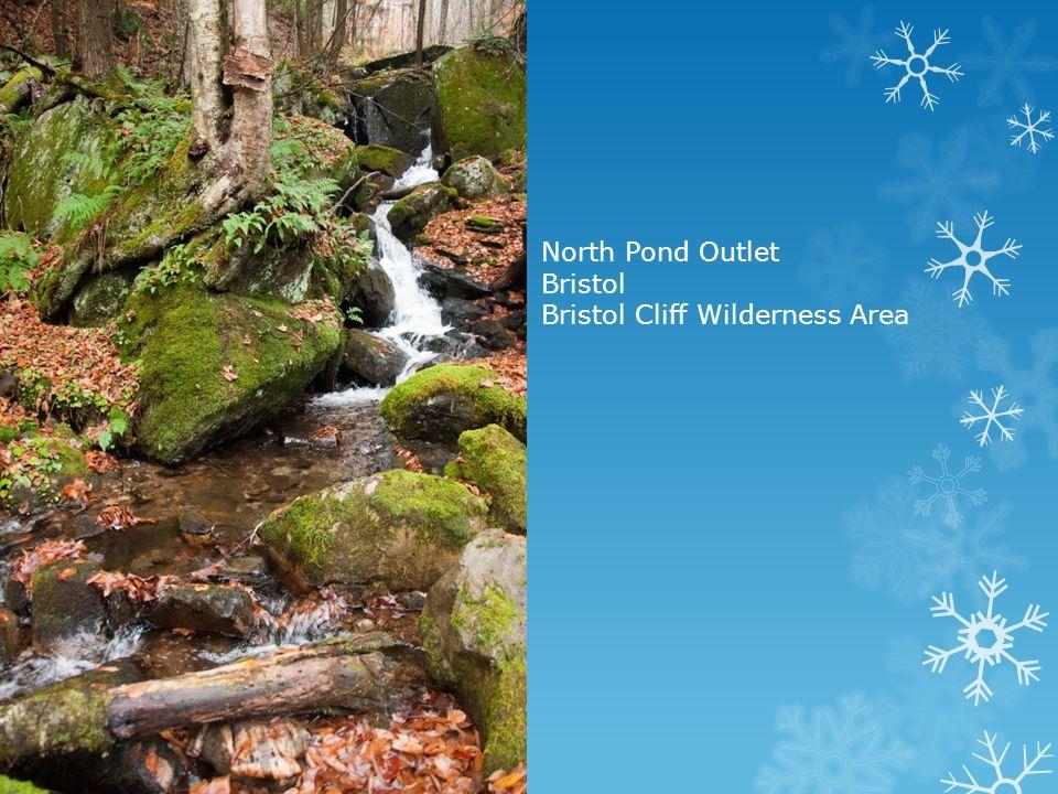 North Pond Outlet Bristol Bristol Cliff Wilderness Area