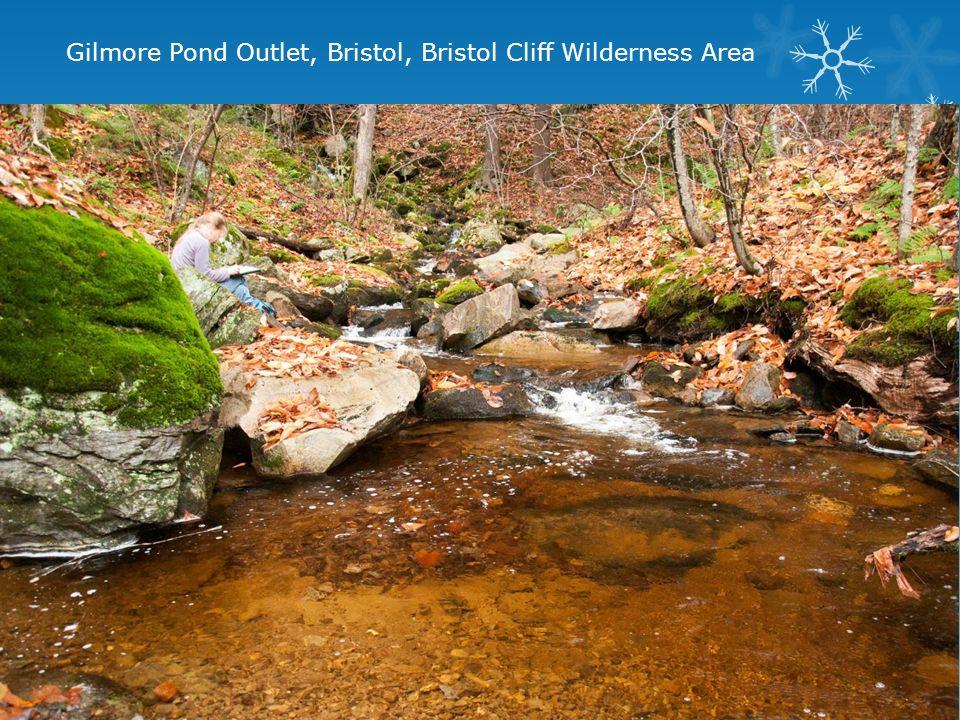 Gilmore Pond Outlet, Bristol, Bristol Cliff Wilderness Area