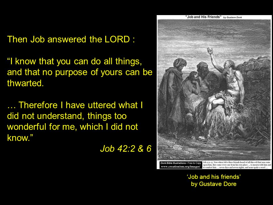 Then Job answered the LORD :