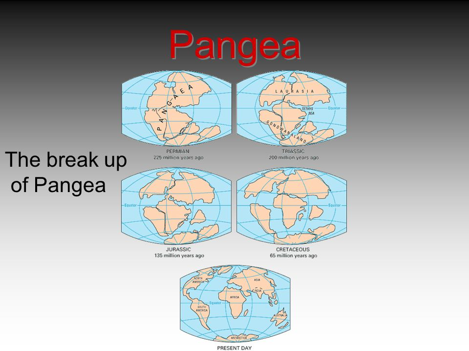 Pangea The break up of Pangea