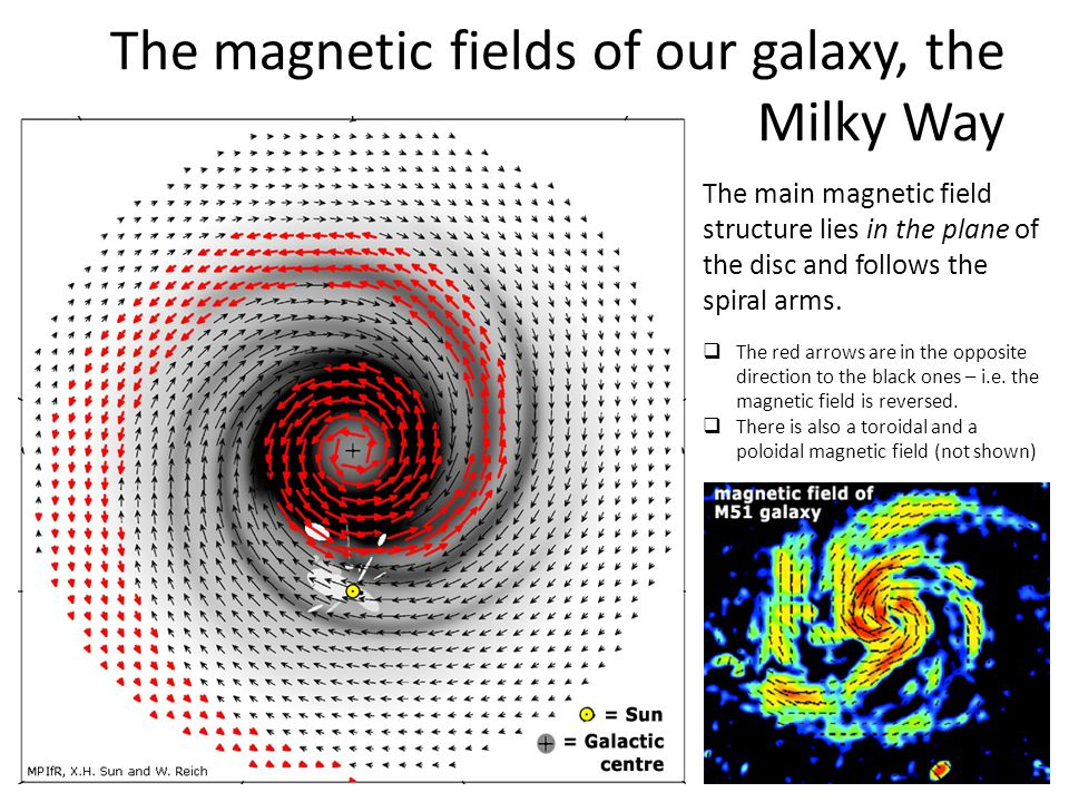 The magnetic fields of our galaxy, the Milky Way