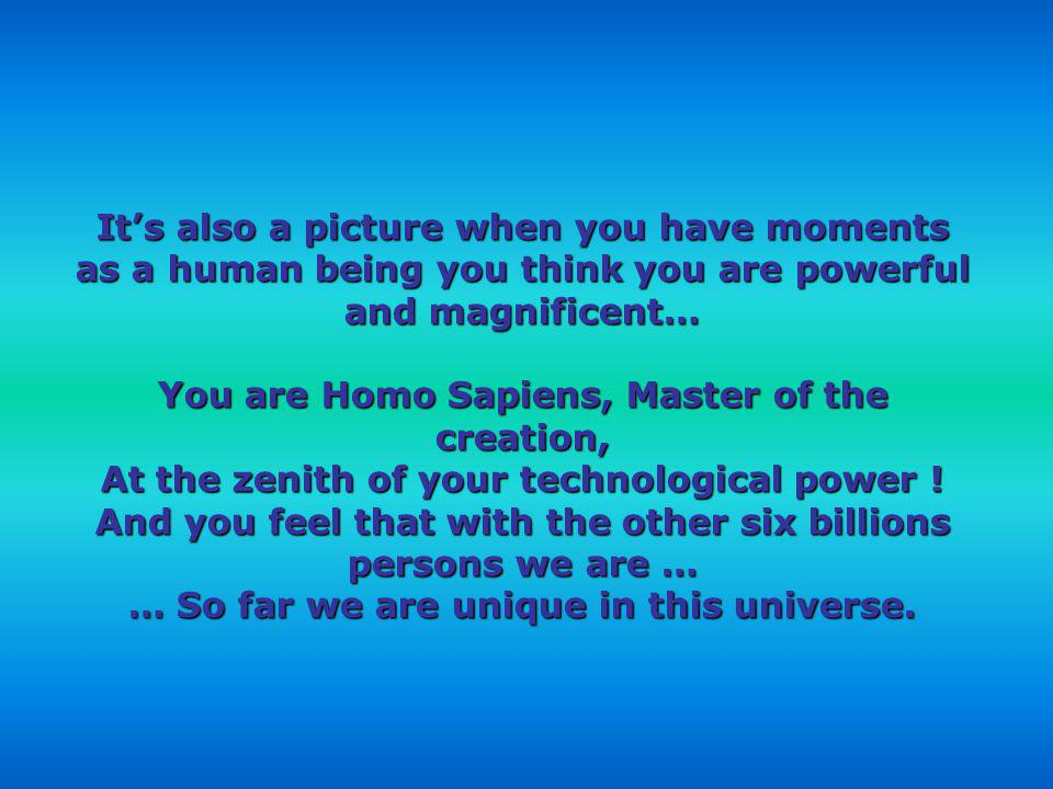 You are Homo Sapiens, Master of the creation,
