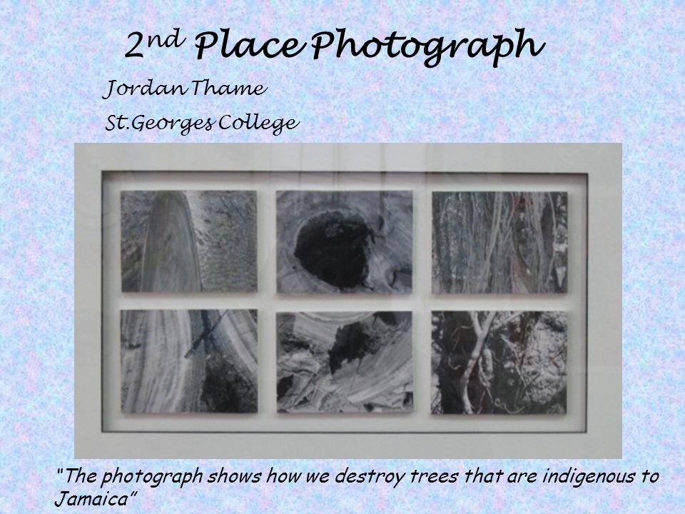 2nd Place Photograph Jordan Thame St.Georges College