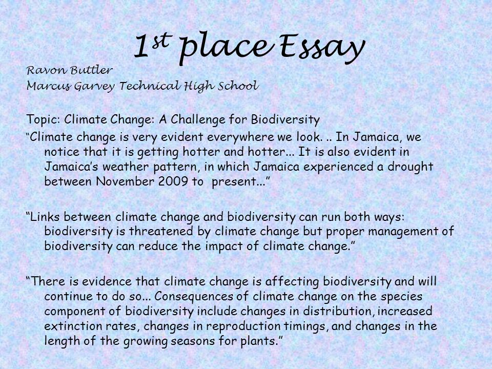 Essay on climate change
