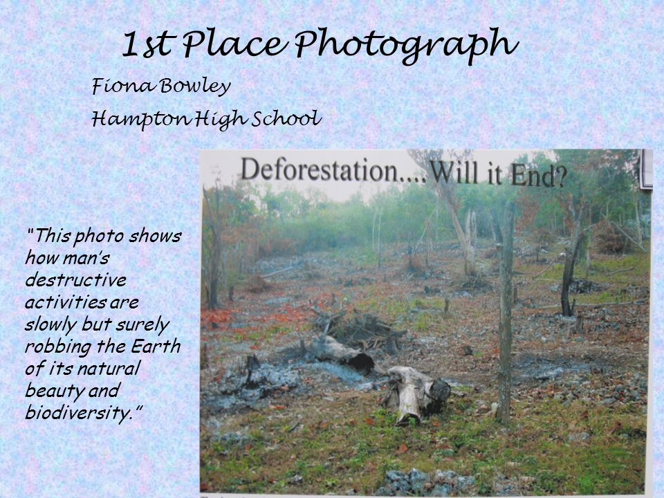 1st Place Photograph Fiona Bowley Hampton High School
