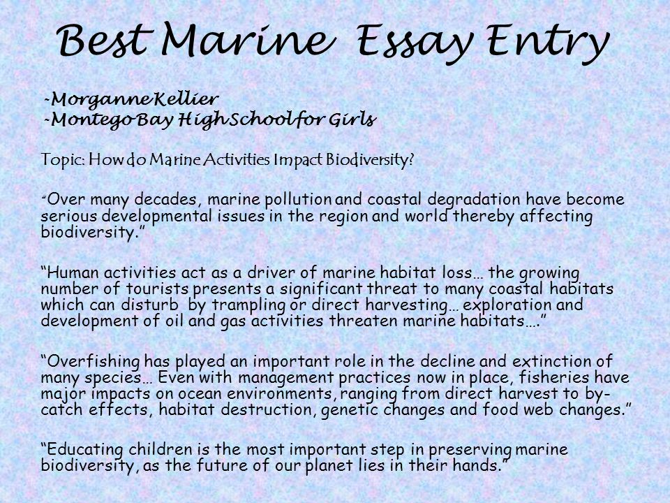 Essay On Marine Life Pollution  How Water Pollution Effects Marine  Navigation Menu English Persuasive Essay Topics also Thesis Essay  Product Review Writing Service