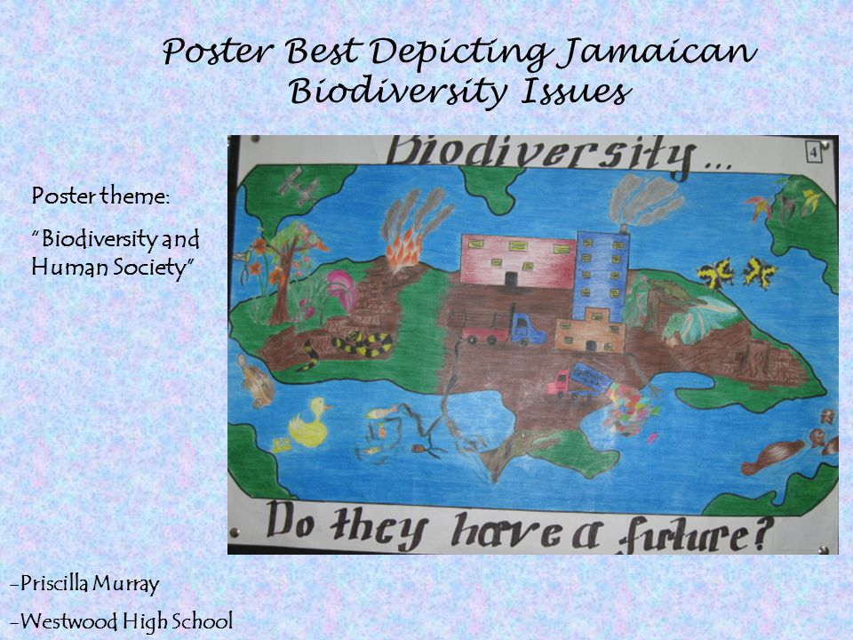 Poster Best Depicting Jamaican Biodiversity Issues