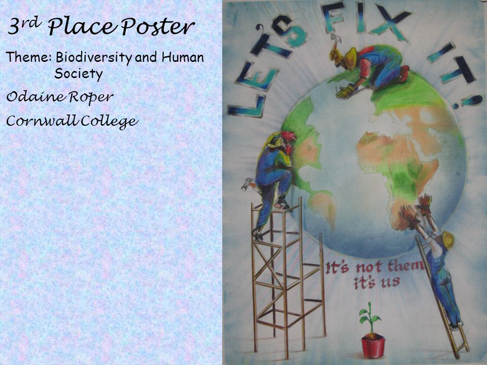 3rd Place Poster Theme: Biodiversity and Human Society Odaine Roper