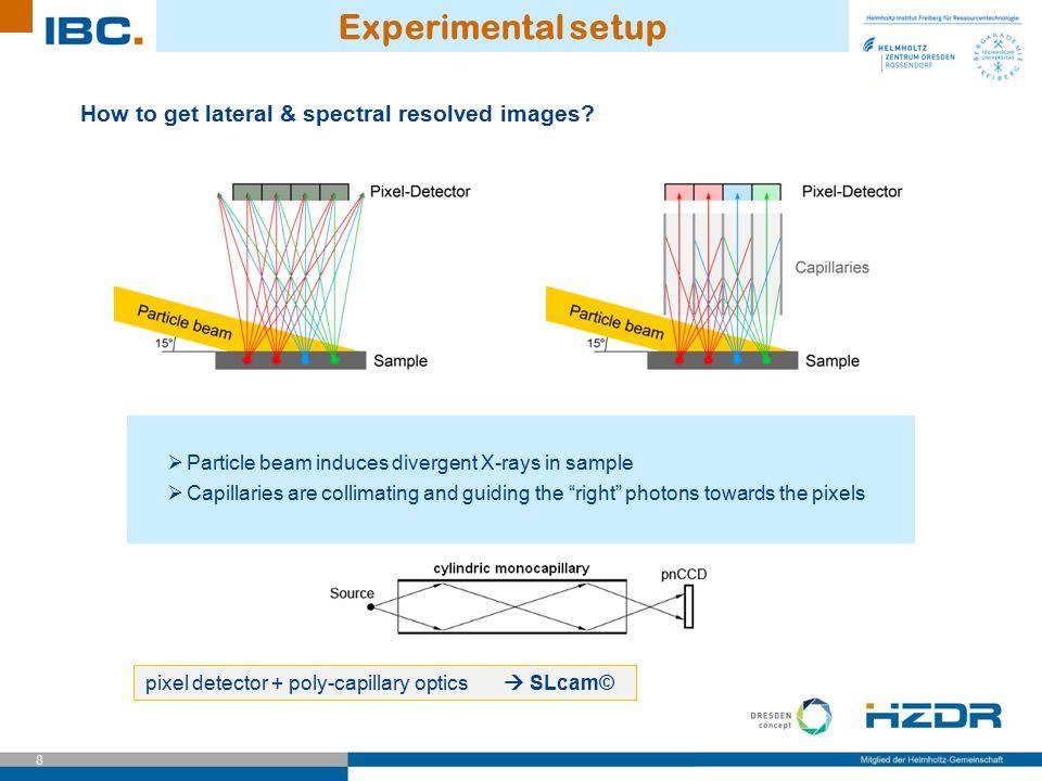pixel detector + poly-capillary optics  SLcam©