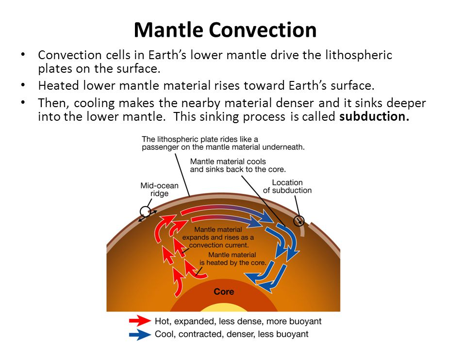 Mantle Convection Convection cells in Earth's lower mantle drive the lithospheric plates on the surface.