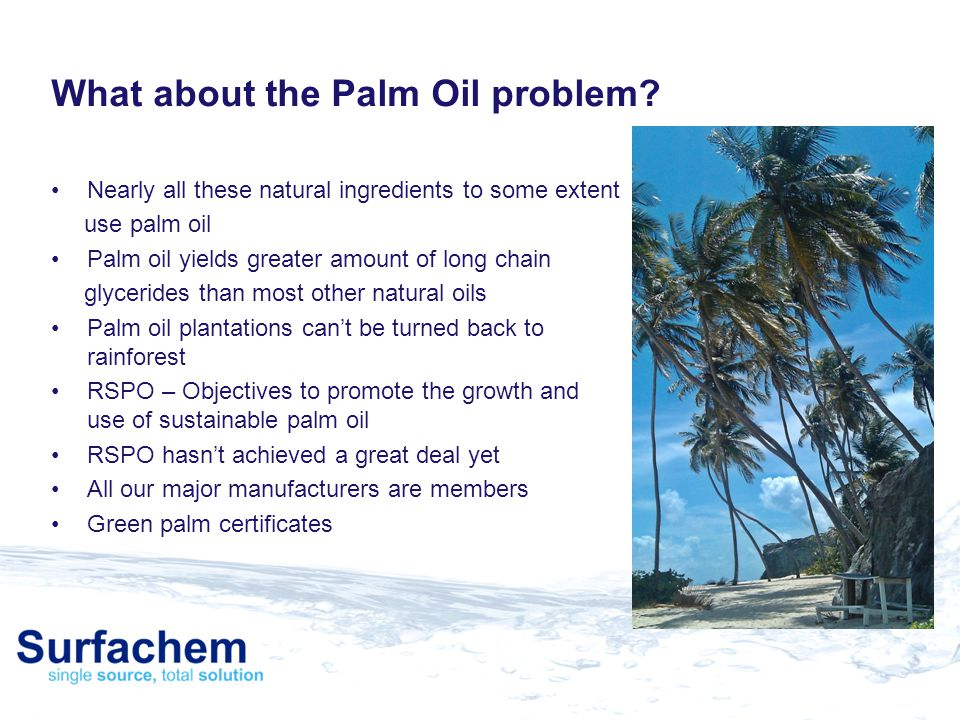 What about the Palm Oil problem
