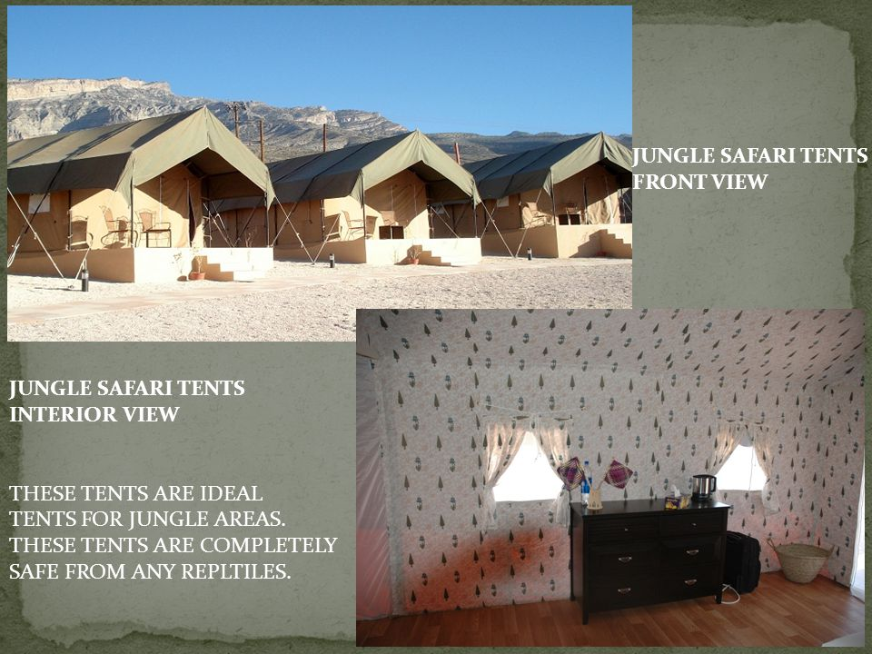 JUNGLE SAFARI TENTS FRONT VIEW. JUNGLE SAFARI TENTS. INTERIOR VIEW. THESE TENTS ARE IDEAL. TENTS FOR JUNGLE AREAS.