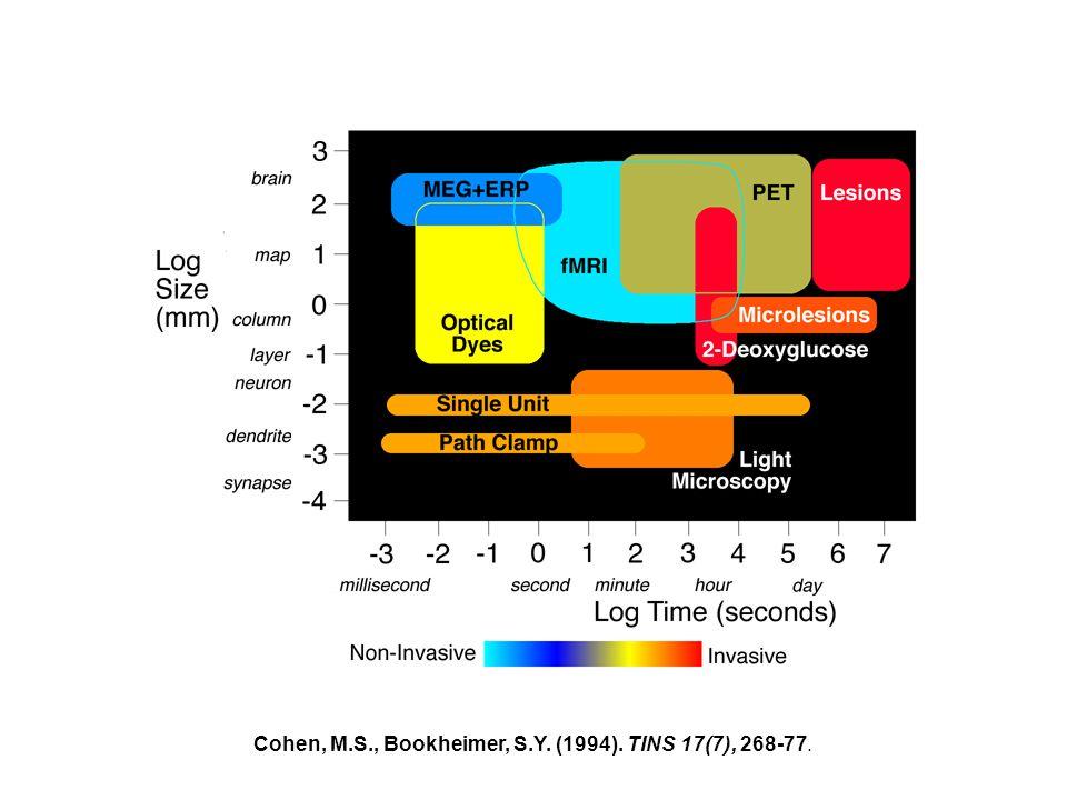 Cohen, M.S., Bookheimer, S.Y. (1994). TINS 17(7), 268-77.