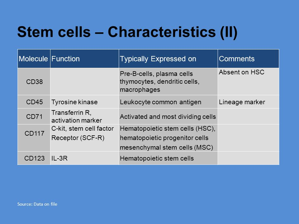 Stem cells – Characteristics (II)