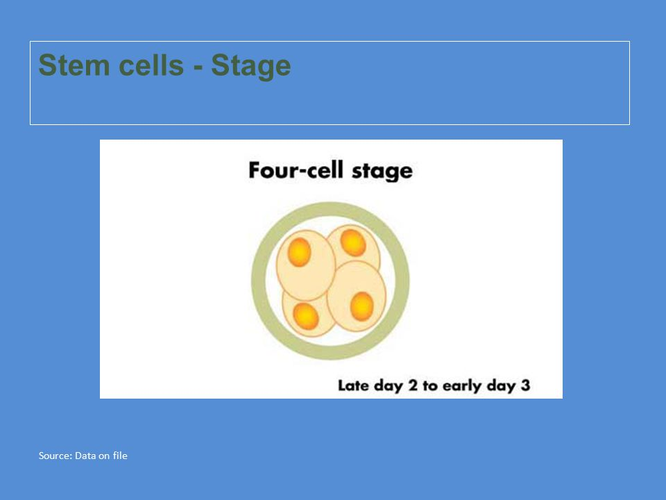 Stem cells - Stage Source: Data on file