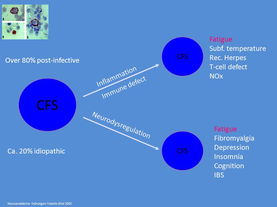 CFS Fatigue Subf. temperature Rec. Herpes CFS T-cell defect NOx