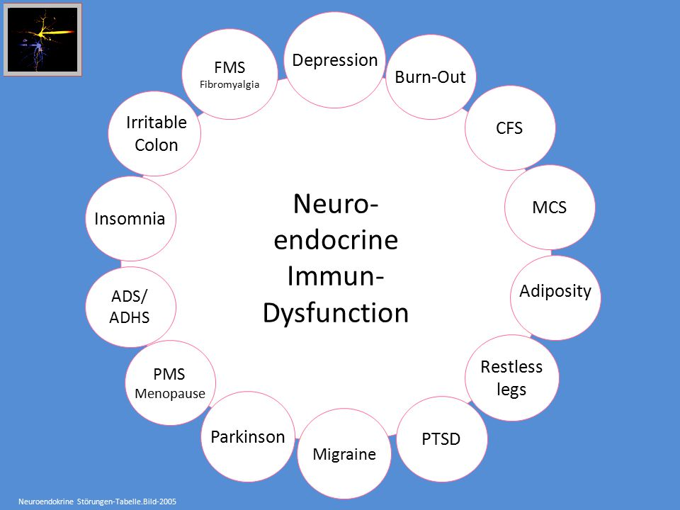 Neuro- endocrine Immun- Dysfunction Depression Burn-Out CFS Irritable