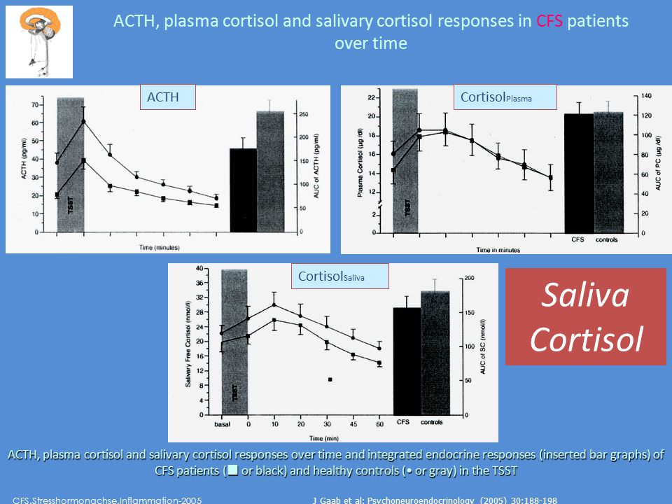 ACTH, plasma cortisol and salivary cortisol responses in CFS patients over time