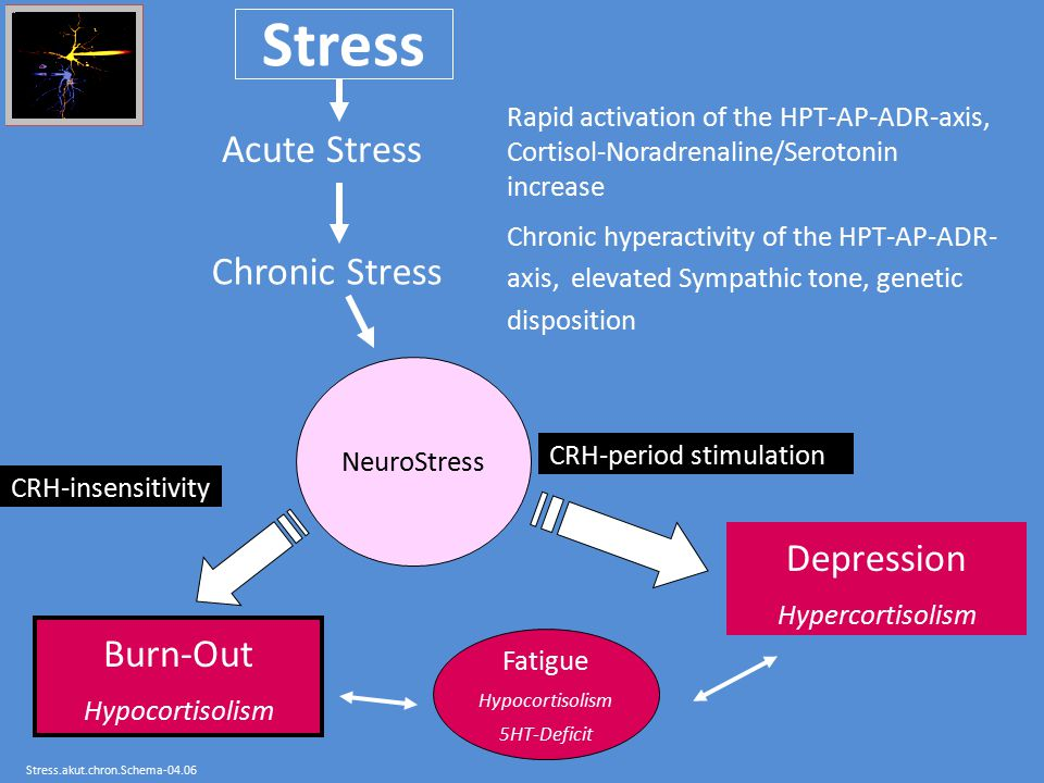 Stress Acute Stress Chronic Stress Depression Burn-Out