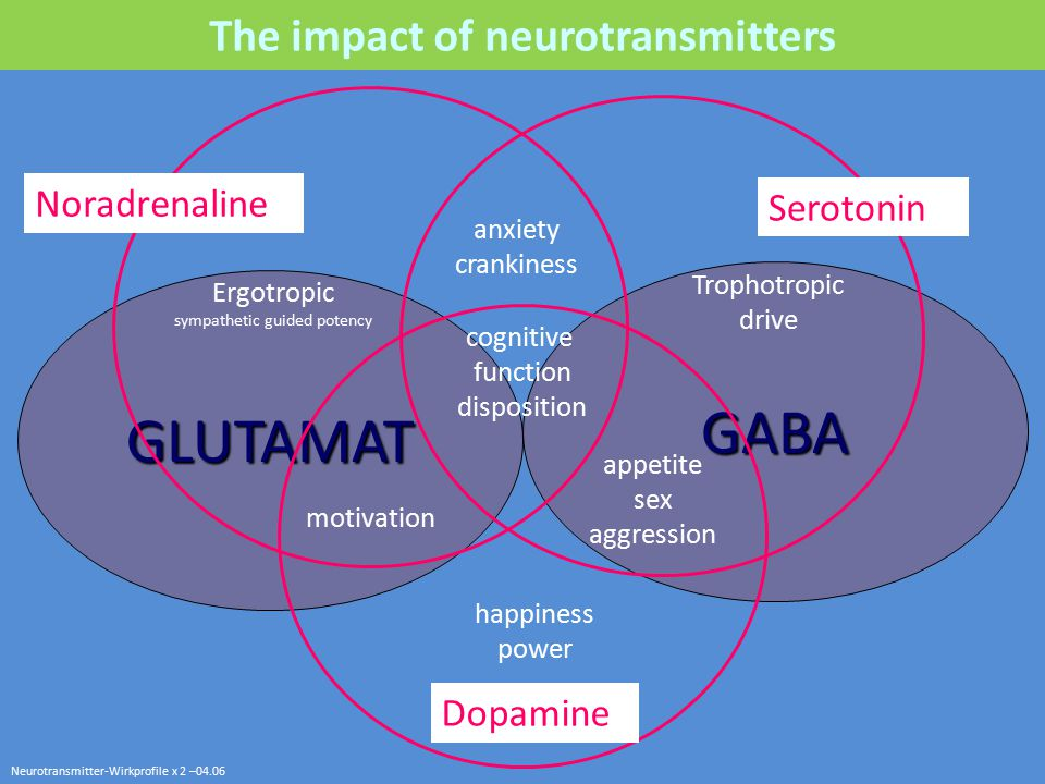 The impact of neurotransmitters