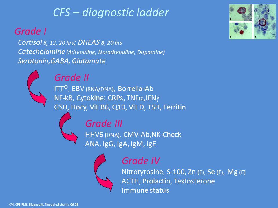 CFS – diagnostic ladder