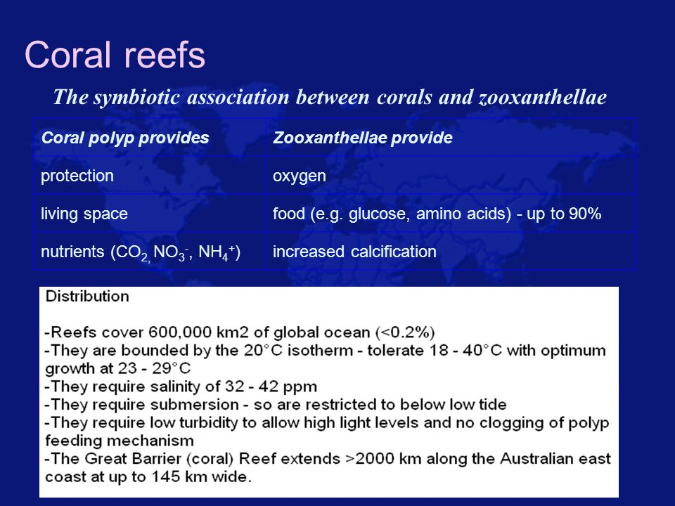 Coral reefs The symbiotic association between corals and zooxanthellae