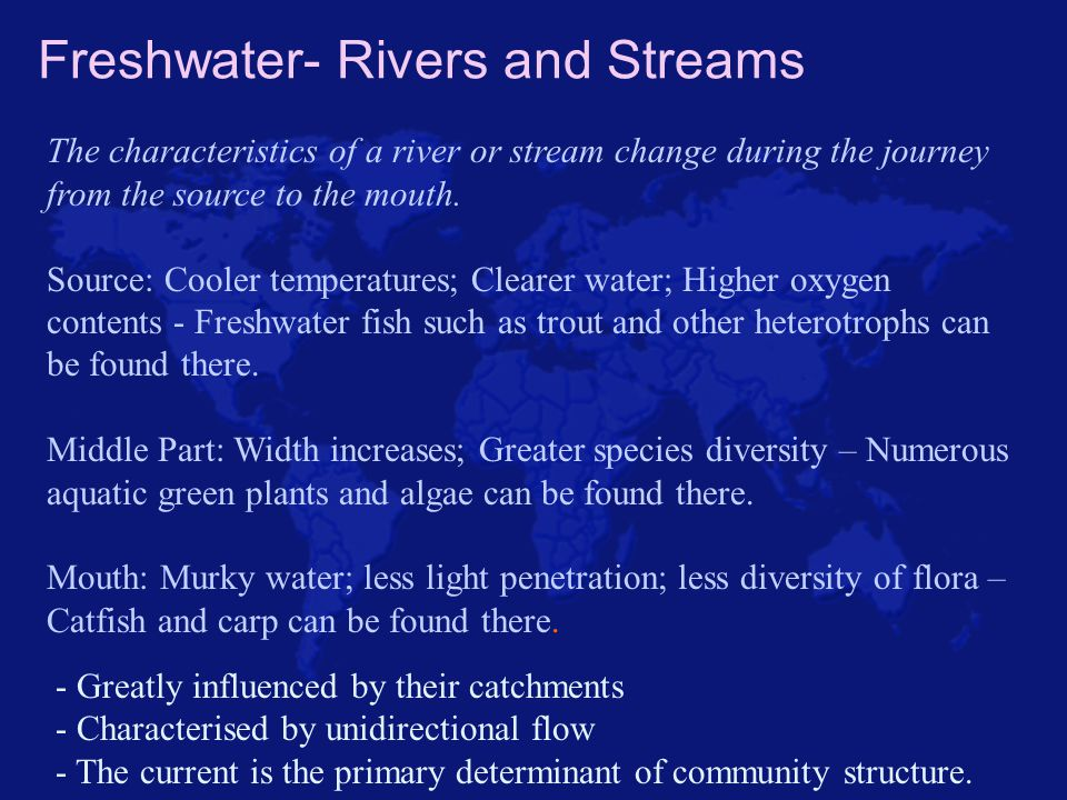 Freshwater- Rivers and Streams