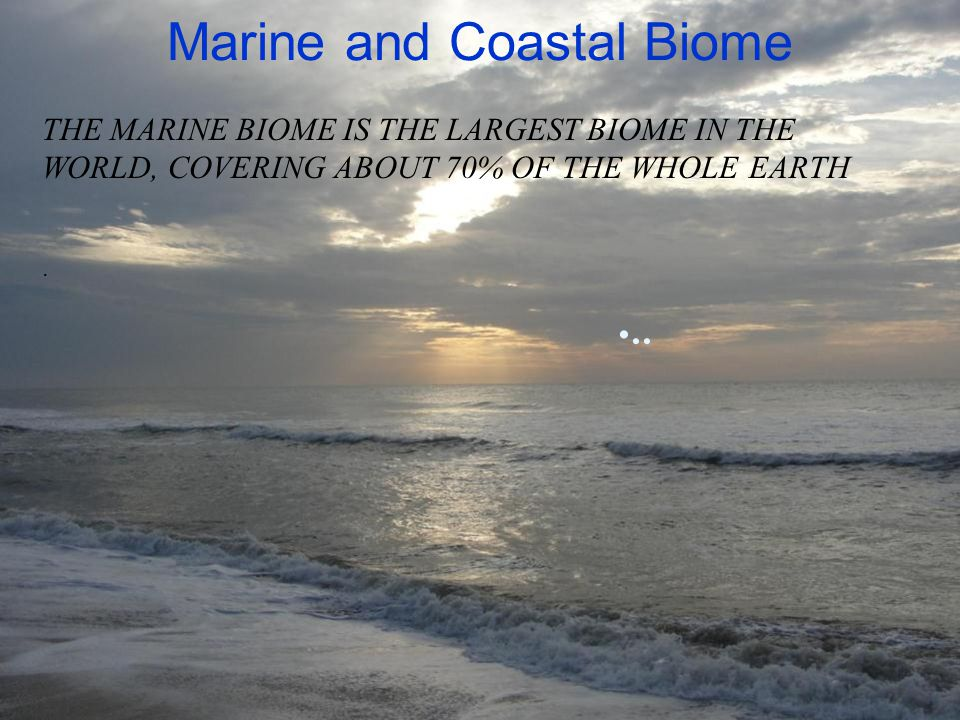 Marine and Coastal Biome