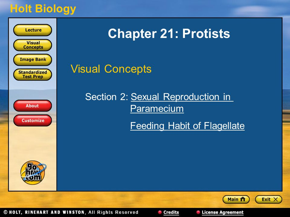 Chapter 21: Protists Visual Concepts