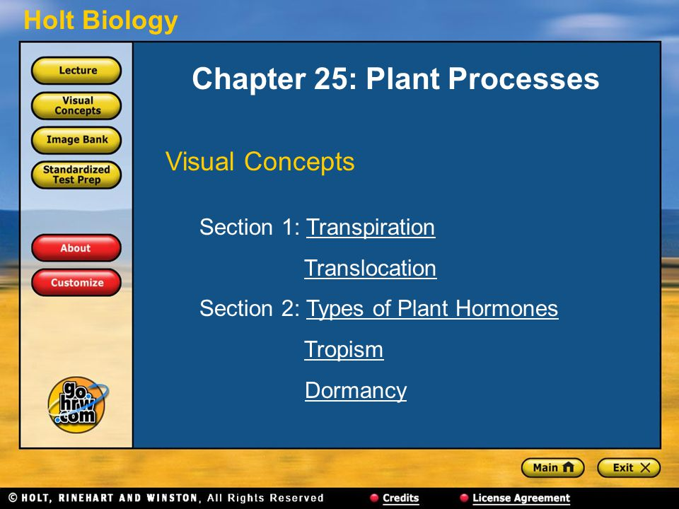 Chapter 25: Plant Processes