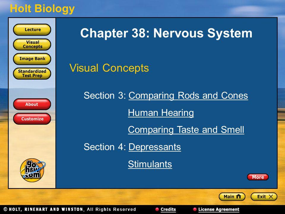 Chapter 38: Nervous System