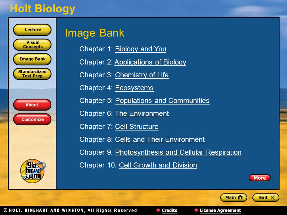 Image Bank Chapter 1: Biology and You