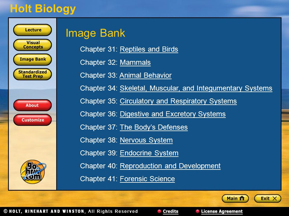 Image Bank Chapter 31: Reptiles and Birds Chapter 32: Mammals