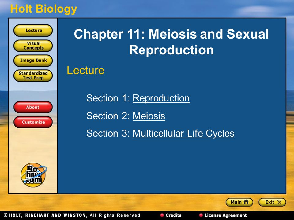 Chapter 11: Meiosis and Sexual Reproduction