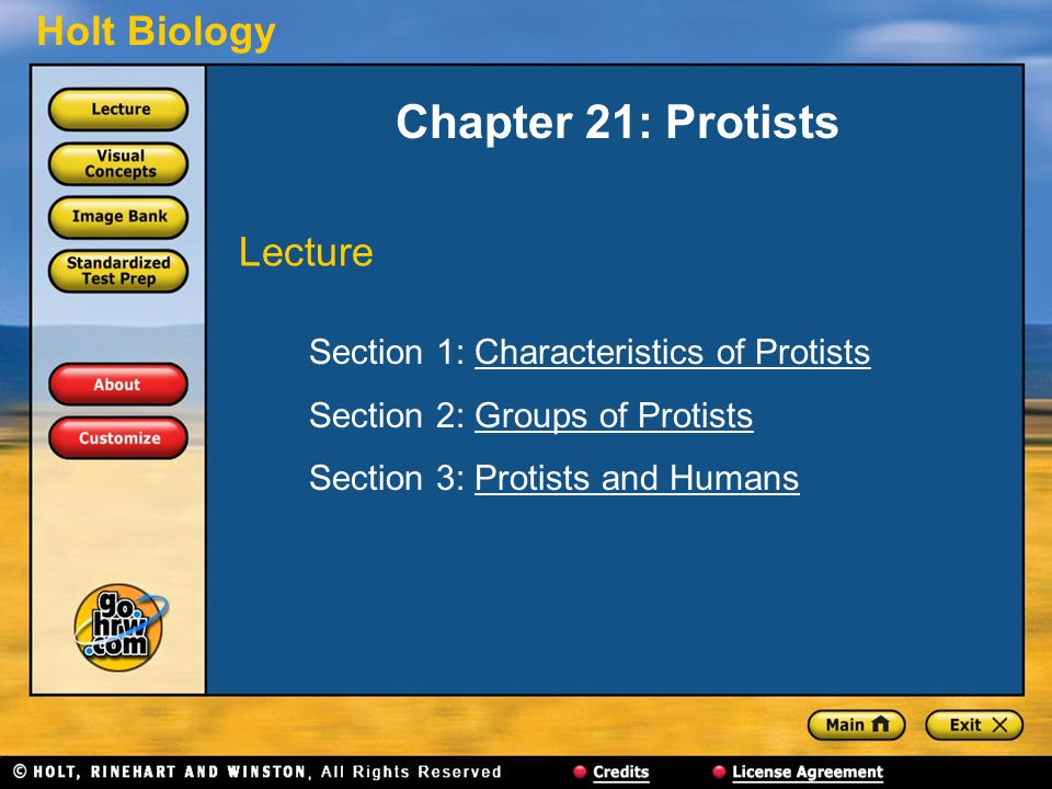 Chapter 21: Protists Lecture Section 1: Characteristics of Protists