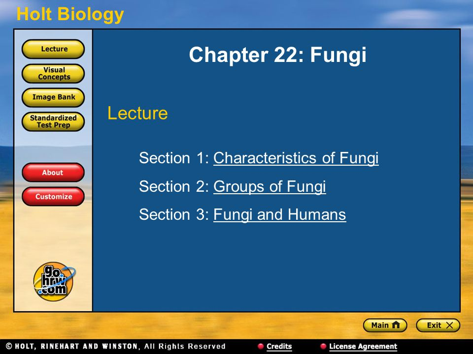 Chapter 22: Fungi Lecture Section 1: Characteristics of Fungi