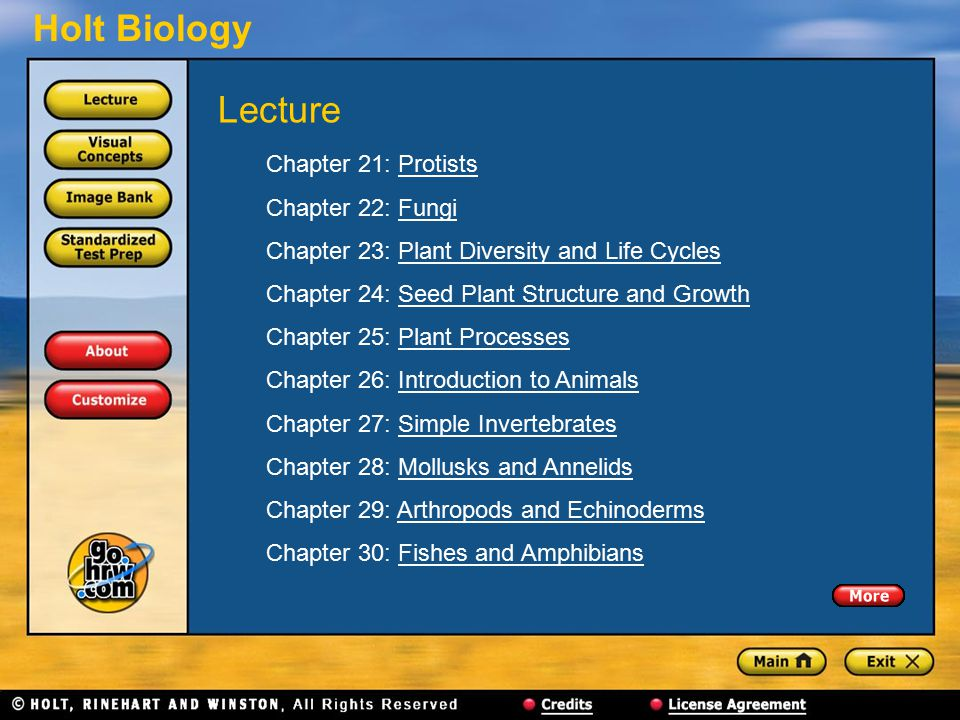 Lecture Chapter 21: Protists Chapter 22: Fungi