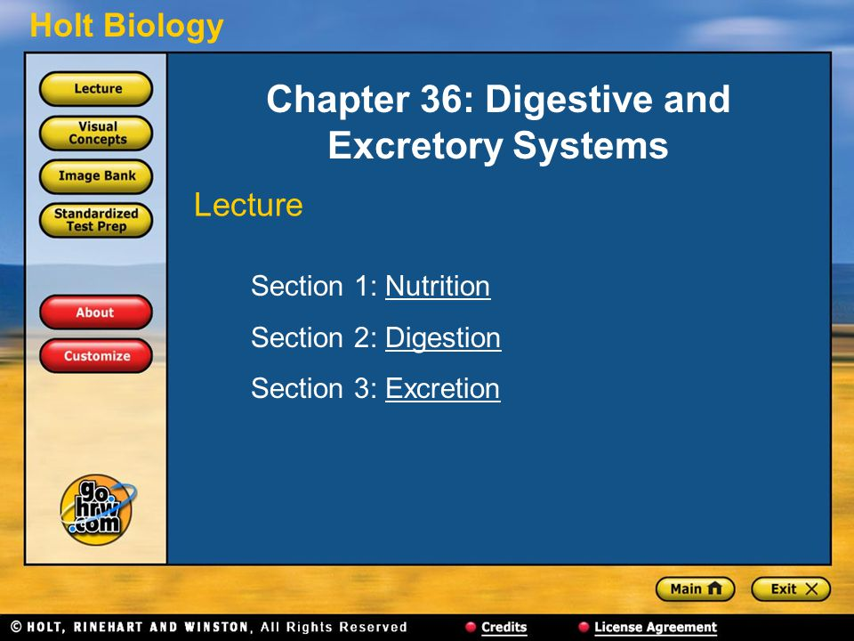 Chapter 36: Digestive and Excretory Systems