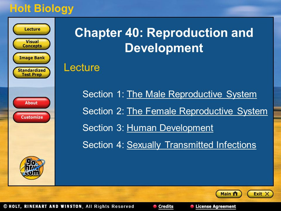 Chapter 40: Reproduction and Development