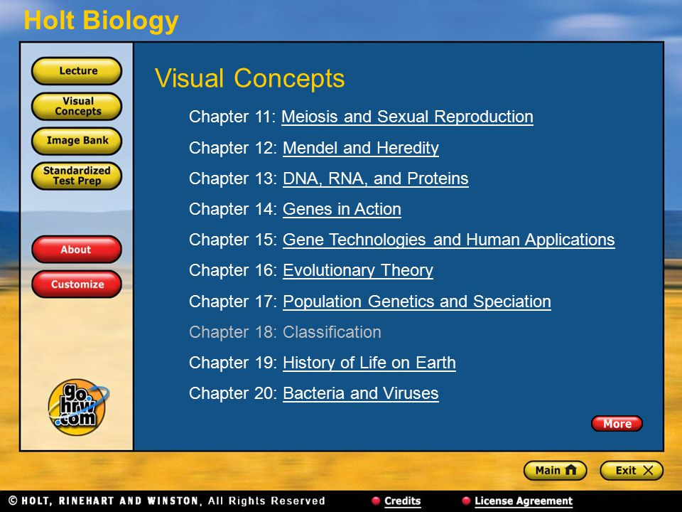 Visual Concepts Chapter 11: Meiosis and Sexual Reproduction