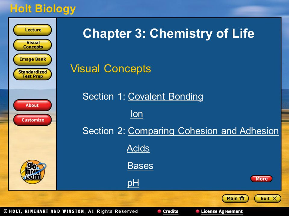 Chapter 3: Chemistry of Life