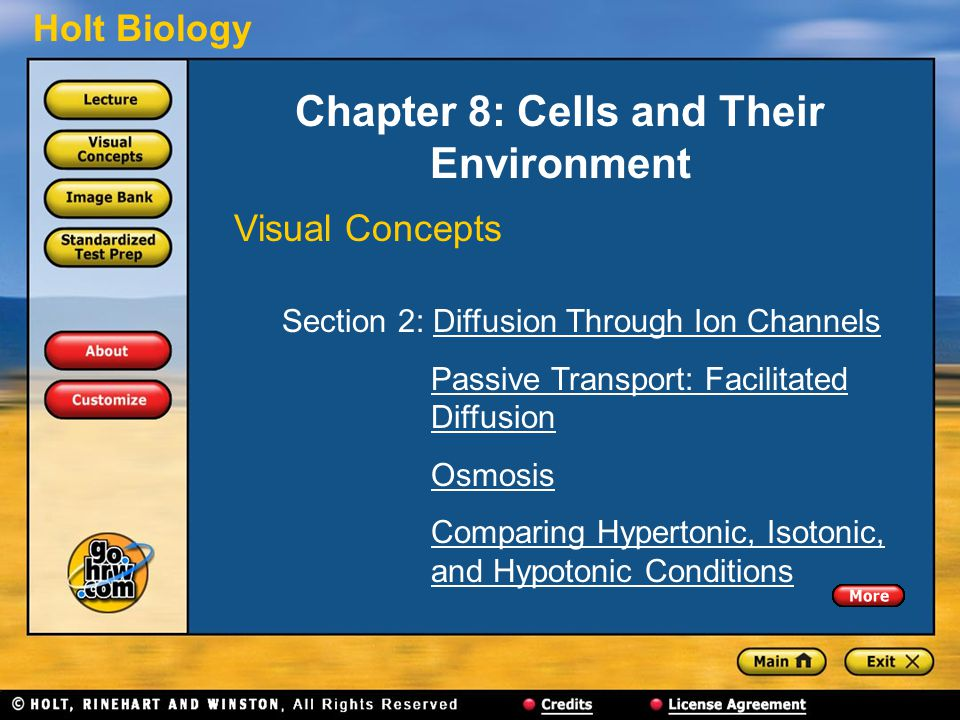 Chapter 8: Cells and Their Environment