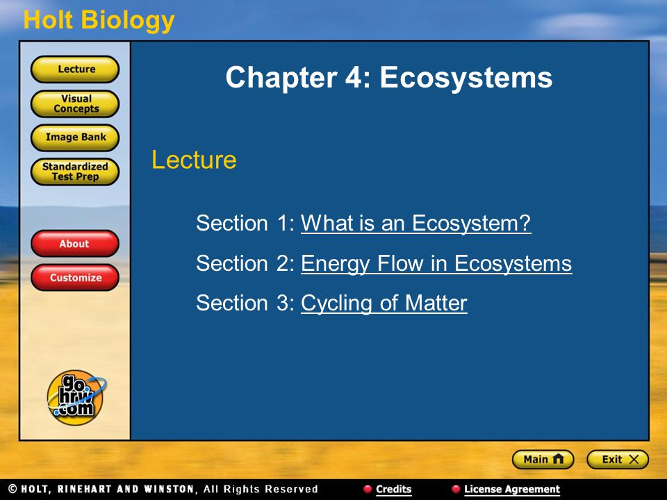 Chapter 4: Ecosystems Lecture Section 1: What is an Ecosystem