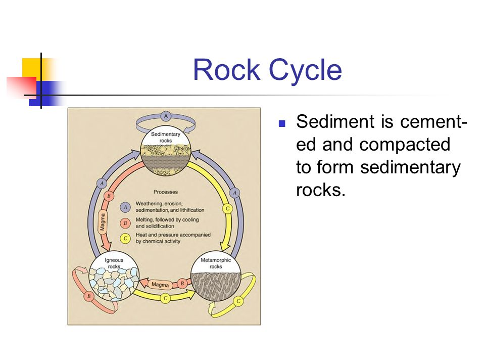 Rock Cycle Sediment is cement-ed and compacted to form sedimentary rocks.